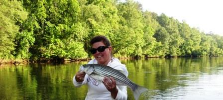 Etowah River Striper